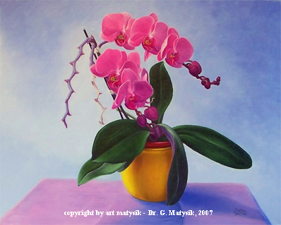 orchid in the artist's studio
