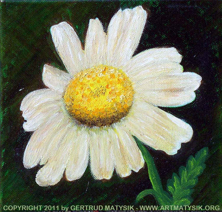 natural_composition_20-oil_canvas_20cmx20cm-Gertrud_Matysik-www.artmatysik.org-100_4534